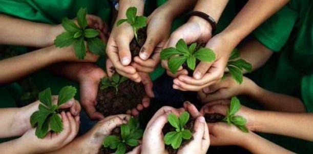 Inizio del servizio civile in agricoltura